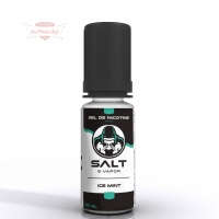 SALT E VAPOR - Ice Mint 10ml (Nikotinsalz)