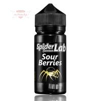 Spider Lab - Sour Berries 10ml (Shake & Vape Aroma)