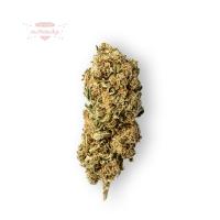Green Berry CBD Blüten (Treibhaus)
