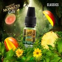 Twelve Monkeys Salts - MANGABEYS 10ml (Nikotinsalz)
