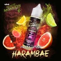 Twelve Monkeys - Harambae 60ml (Shake & Vape)